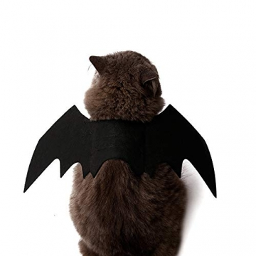 Crewell Halloween Costume halloween gatto per Animale domestico Cane Gatto,ali pipistrello Costume da pipistrello,cosplay gatto - 6