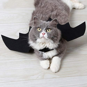 Crewell Halloween Costume halloween gatto per Animale domestico Cane Gatto,ali pipistrello Costume da pipistrello,cosplay gatto - 7