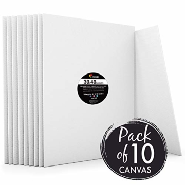 Zenacolor - Set di 10 Tele Cartonate per Dipingere 30 x 40 cm - Tutti i Tipi di Pittura su Tela - 100% Cotone Senza Acidi. - 1