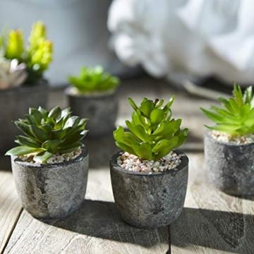 Jobary Set di 5 Piante Artificiali Succulente (Include 10 Piante), Colorate e Decorative Finte Piante con Pietre, Ideali per casa, Ufficio e Decorazione per Esterni - 2