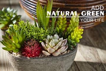 Jobary Set di 5 Piante Artificiali Succulente (Include 10 Piante), Colorate e Decorative Finte Piante con Pietre, Ideali per casa, Ufficio e Decorazione per Esterni - 4
