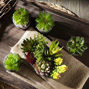 Jobary Set di 5 Piante Artificiali Succulente (Include 10 Piante), Colorate e Decorative Finte Piante con Pietre, Ideali per casa, Ufficio e Decorazione per Esterni - 5