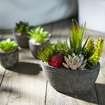Jobary Set di 5 Piante Artificiali Succulente (Include 10 Piante), Colorate e Decorative Finte Piante con Pietre, Ideali per casa, Ufficio e Decorazione per Esterni - 6
