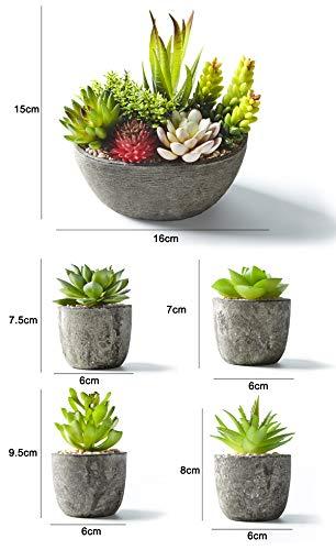 Jobary Set di 5 Piante Artificiali Succulente (Include 10 Piante), Colorate e Decorative Finte Piante con Pietre, Ideali per casa, Ufficio e Decorazione per Esterni - 7
