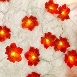 Decorazioni autunnali, Ainkedin luci halloween, 10 Maple Leaf Light Decorazioni del Ringraziamento Ghirlanda, halloween decorazioni decorazioni natalizie applique da parete interno moderno autunno - 1
