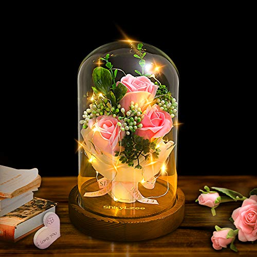 shirylzee Fiore Artificiale Rose Incantate Cupola di Vetro con Base Pino Luci LED Regalo Rosa Eterna per Valentino, Festa Mamma, Anniversario, Ufficio o Decorazioni per la Casa ((Rosa) - 1