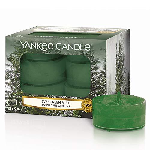Yankee Candle Candele profumate tea light, Bruma sempreverde, collezione Natale in montagna, 12 pezzi - 1