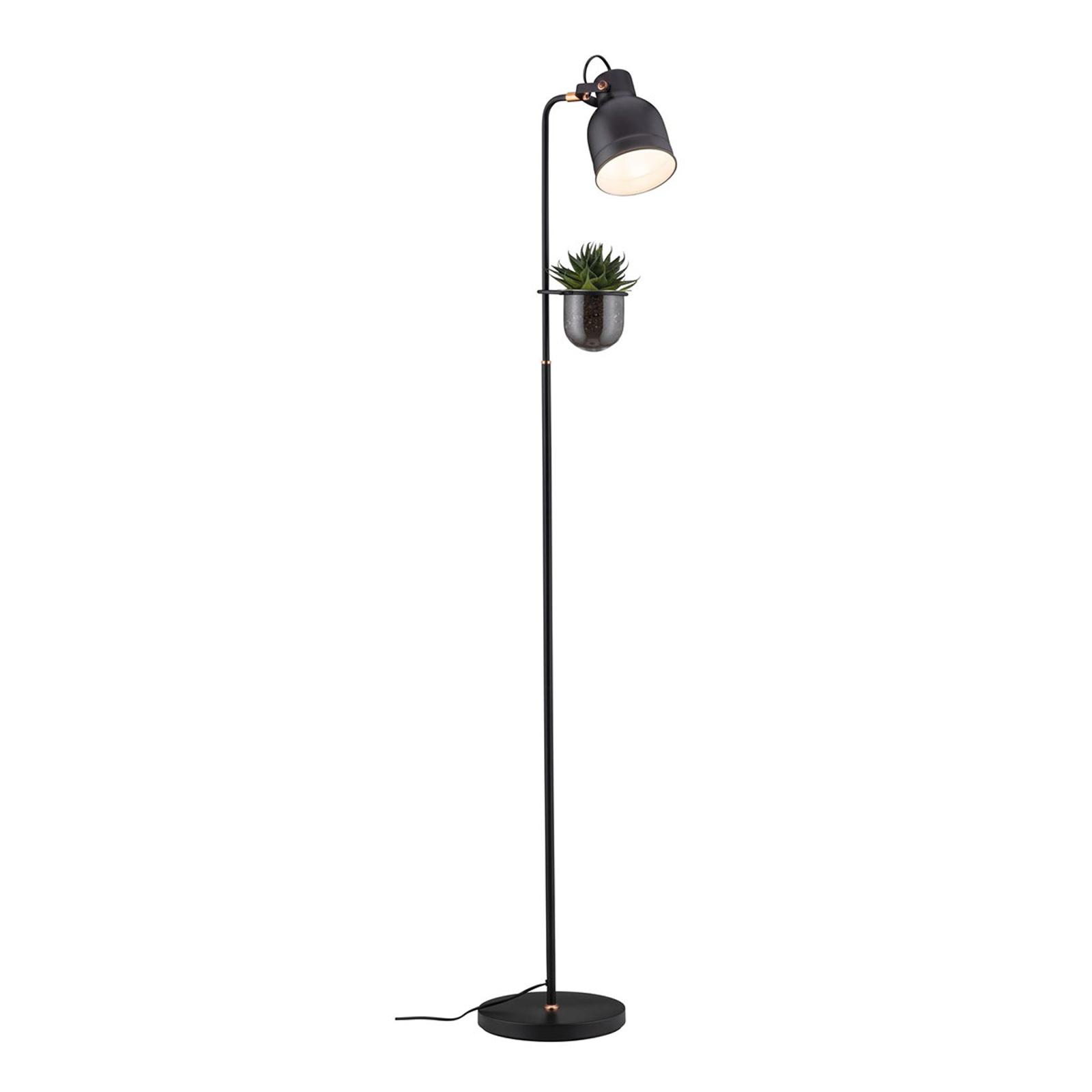 Dove acquistare Paulmann lampada da terra Elric con vaso piante