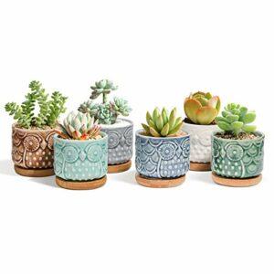 Dove acquistare ComSaf Vaso per Pianta Grassa Vaso di Piante con Vassoio di bambù Pancromatico 6.6CM Ceramica Gufo Set di 6, Fioriere di Cactus Contenitori Vasi di Fiori Decorativo del Desktop Davanzale Bonsai