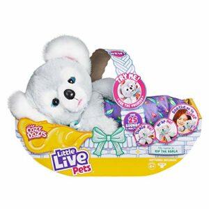 Little Live Pets – Cozy Dozys Koala, 26233 Giochi e giocattoli