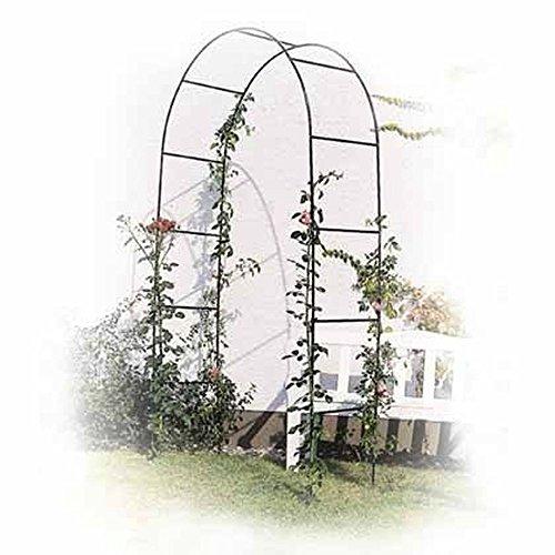Arco per Rose Rampicanti in Metallo Graticcio Casa e giardino