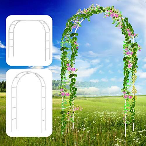 Bilisder Arco per Piante in Metallo 240 * 140cm Arco per Rosa Rampicanti, Decorazione Giardino, Garden Pergolas Arco da… Casa e giardino