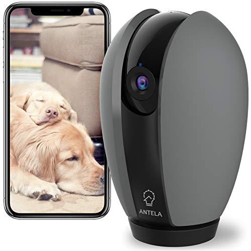 Telecamera WiFi Interno, ANTELA 1080P Videocamera Sorveglianza, Baby/Pet Monitor, Rilevamento del Movimento, Audio…