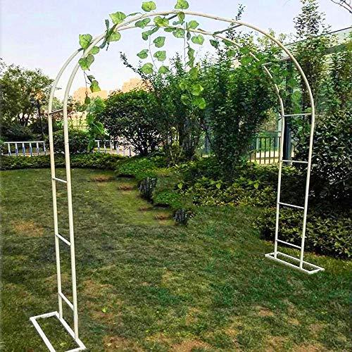 ZH-1 Arco da Giardino Fiori Arco Supporto per Piante Rampicanti, Decoro Esterni Pergolato, Tubolare in Acciaio zincato… Casa e giardino