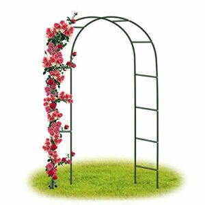 Forever Speed Arco per Rose Rampicanti , Decorazione Giardino, Garden Pergolas Metallo Arco Sostegno per Piante… Casa e giardino