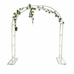 XDJ Arco per Piante Rampicanti, Arco da Giardino, Pergolato da Giardino, Bianco, Metallo, con Telaio di Supporto… Casa e giardino