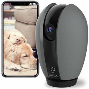 Telecamera WiFi Interno, ANTELA 1080P Videocamera Sorveglianza, Baby/Pet Monitor, Rilevamento del Movimento, Audio… Sicurezza e videosorveglianza