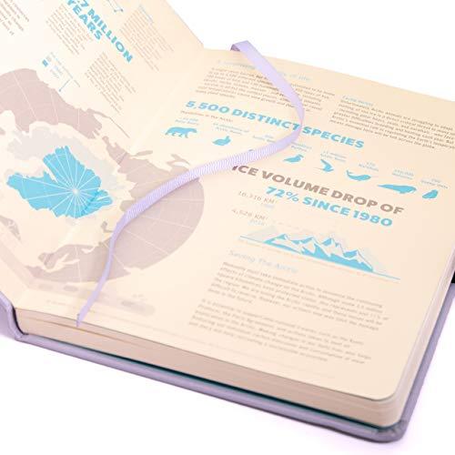 Dove acquistare Dingbats* Earth Glicine – Diario formato A5 con copertina rigida, in finta pelle, a prova di FP 100 g/m², pagine numerate, tasca interna, chiusura elastica, portapenne, 2 segnalibri (puntato, artico)
