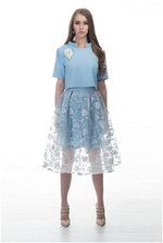 Blue organza skirt and top