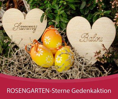 ROSENGARTEN Tierbestattung Video Stiftung Ostern Gedenkaktion Sterne