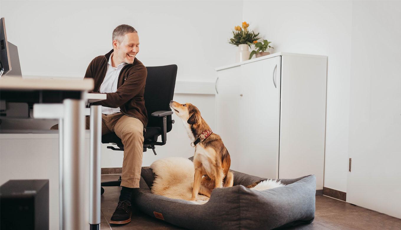 ROSENGARTEN Tierbestattung Arbeitsplatz Bürohund