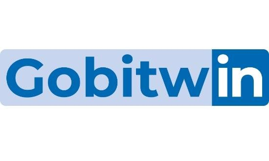 Gobitwin / Prospection B2B - Formation LinkedIn