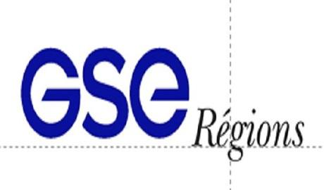GSE PARTNERS
