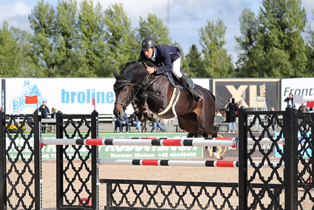 Tävlingshästar