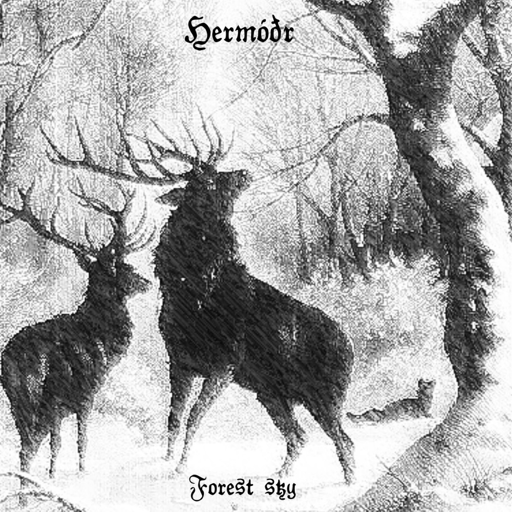 Hermóðr - Forest Sky