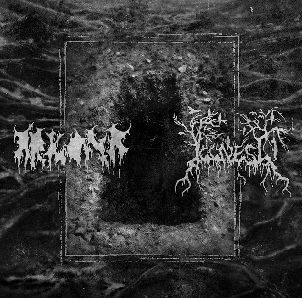 Arkona (POL) - Split with Illness (ep)