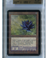 Magic Black Lotus