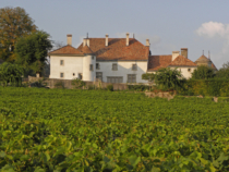 Chateau du Rosey 01