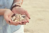 Muscheln In Der Hand
