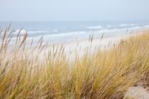 Dunes 1936086 1920