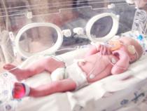 Baby in einem Inkubator
