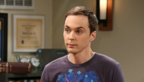 Sheldon Faults
