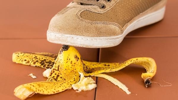 Shoe Fall Foot Reptile Yellow Peel 1078216 Pxhere Com