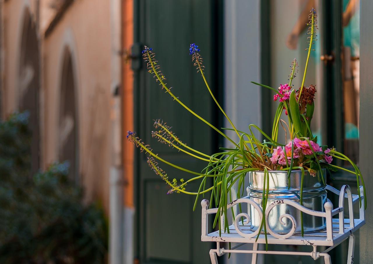 Balkonpflanzen: Balkone gehören zur vermieteten Wohnung. Du kannst also Blumenkästen anbringen oder auch Topfpflanzen aufstellen. Wichtig aber: Sorge dafür, dass dadurch selbst bei starkem Wind niemand in Gefahr gerät.