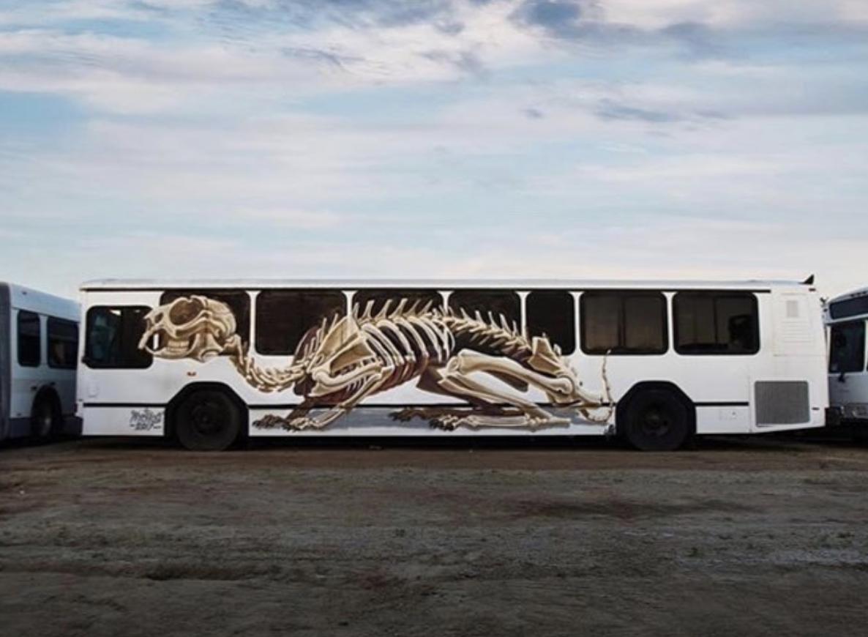 Das neueste Bild auf Instagram: Dieser Bus der etwas anderen Art.