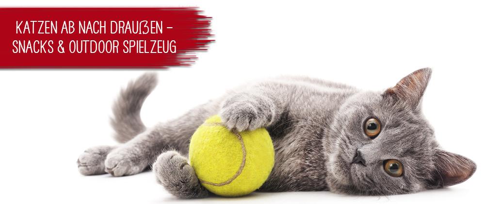 15328663a2a5e3 Katzenfutter, Hundefutter und Tierbedarf - günstig online bestellen.