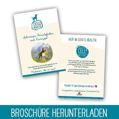 Dogs Health Broschüre