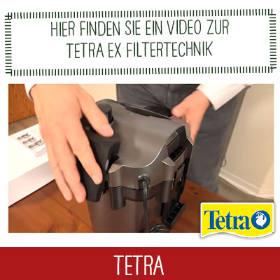 Tetra Video