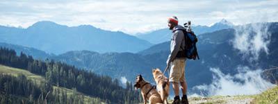 Gemeinsamer Urlaub mit dem Hund