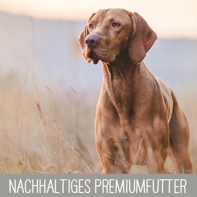 Nachhaltig Hergestelltes Premium Hundefutter