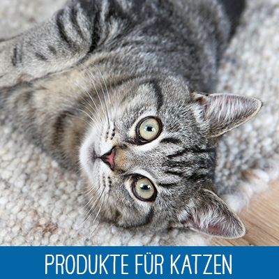 Trixie Produkte für Katzen