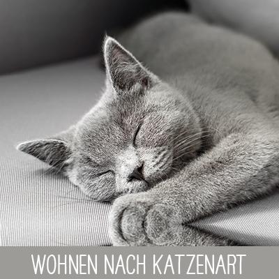 Wohnen nach Katzenart