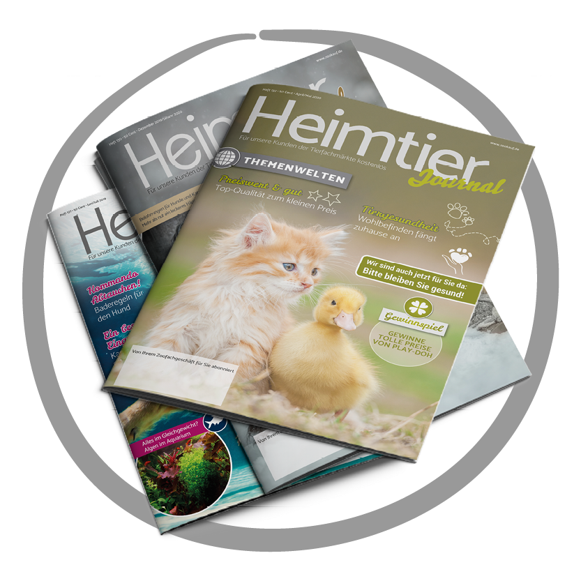 Heimtier Journal Ausgabe 132