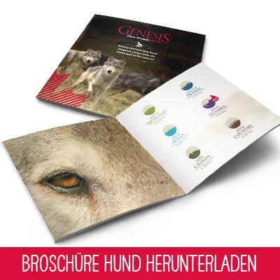 Genesis Pure Canada Dog Broschüre Hund herunterladen