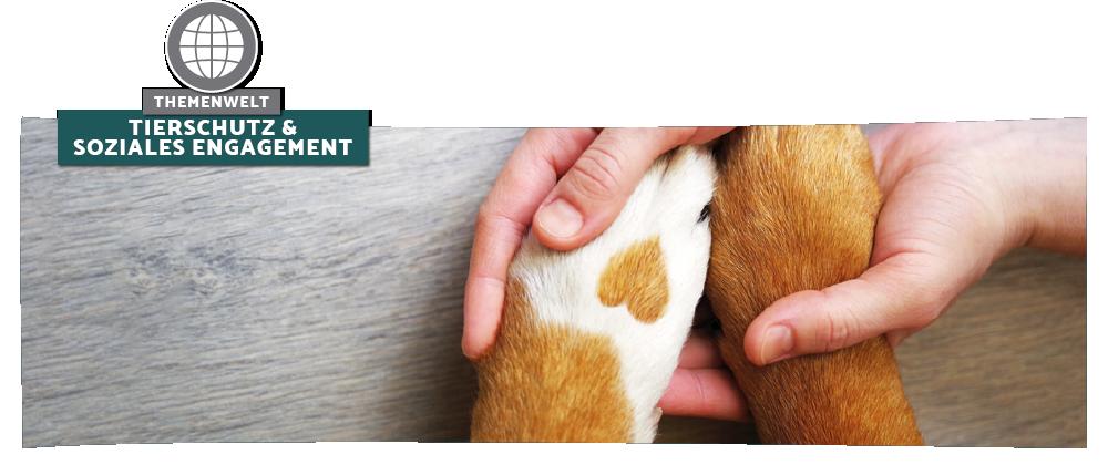 Tierschutz & Soziales Engagement