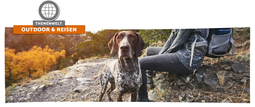 Tipps für gemeinsame Outdoor - Aktivitäten mit dem Hund